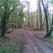 Biking near Poznan 5 - 10 km