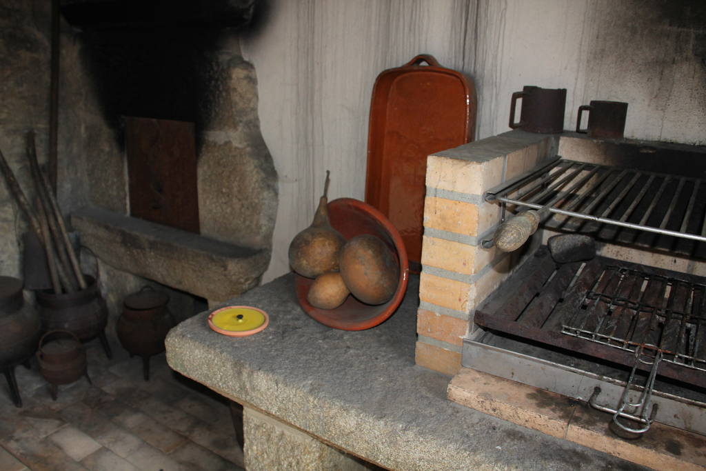 Barbecue and the wood oven