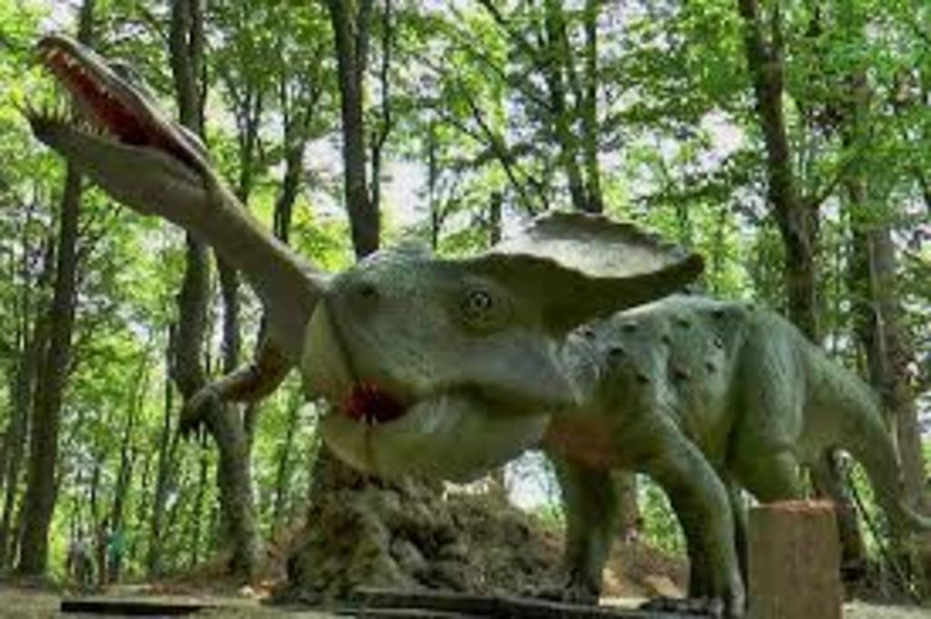 Dino Park, Rasnov, 9 km