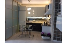 kitchen with full implements and dinner table with plants