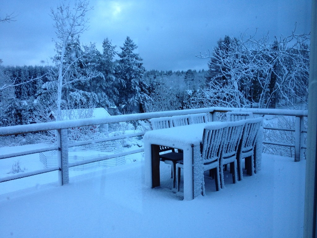 Winter view from our dining area