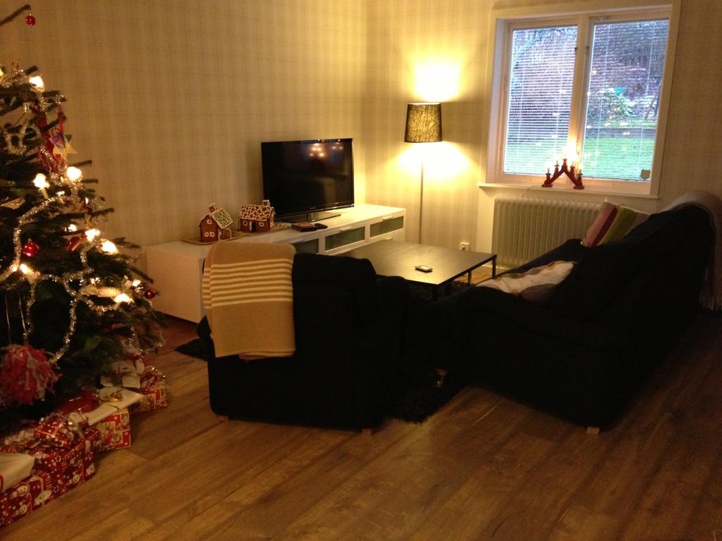 Tv-room/living room