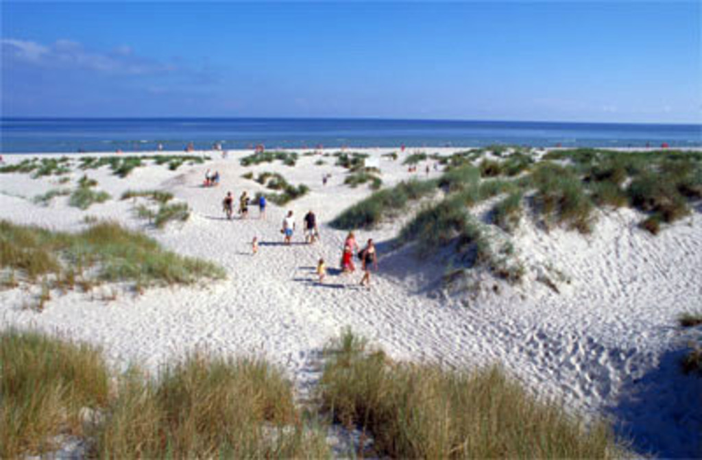 Sandhammaren sandy beach is one of the best in Swedens. 1h drive southeast.