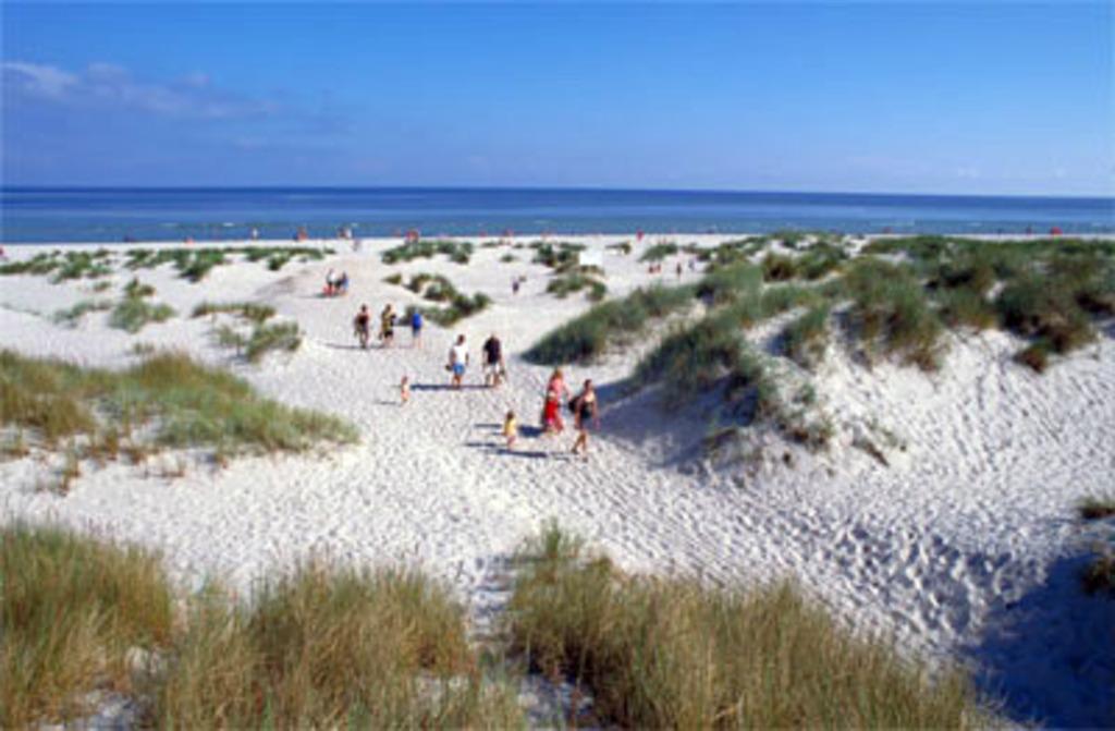 Sandhammaren sandy beach is one of the best in Swedens. 1h drive southeast.