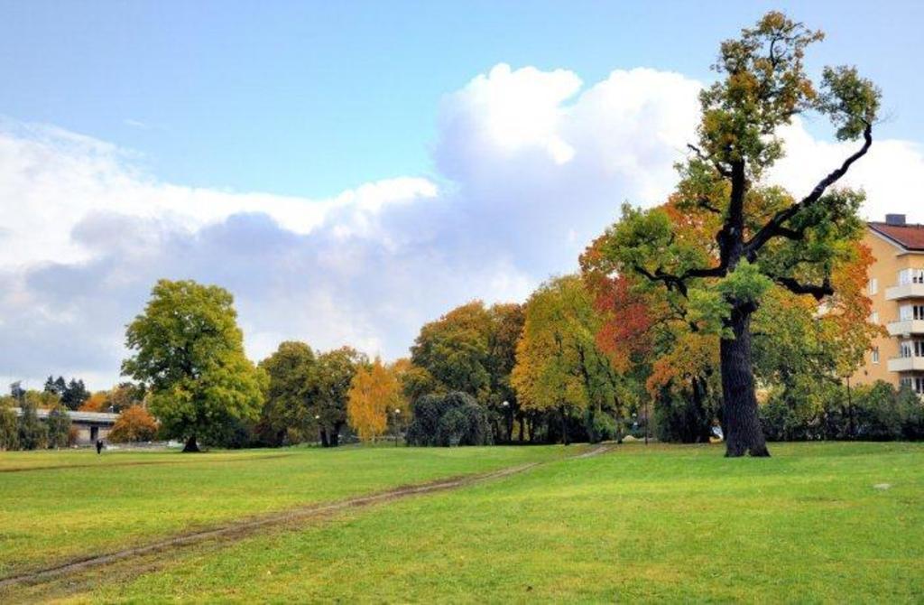 The Rålambshov park