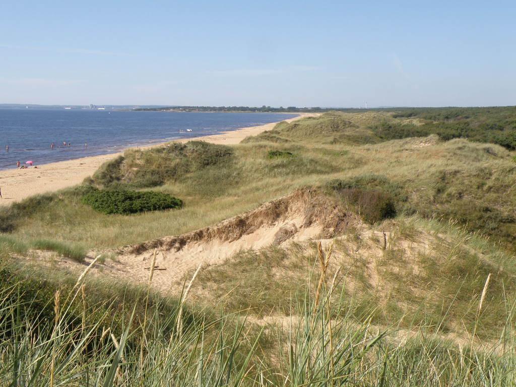 Around Halmstad you find nice beaches with wonderful sanddunes.
