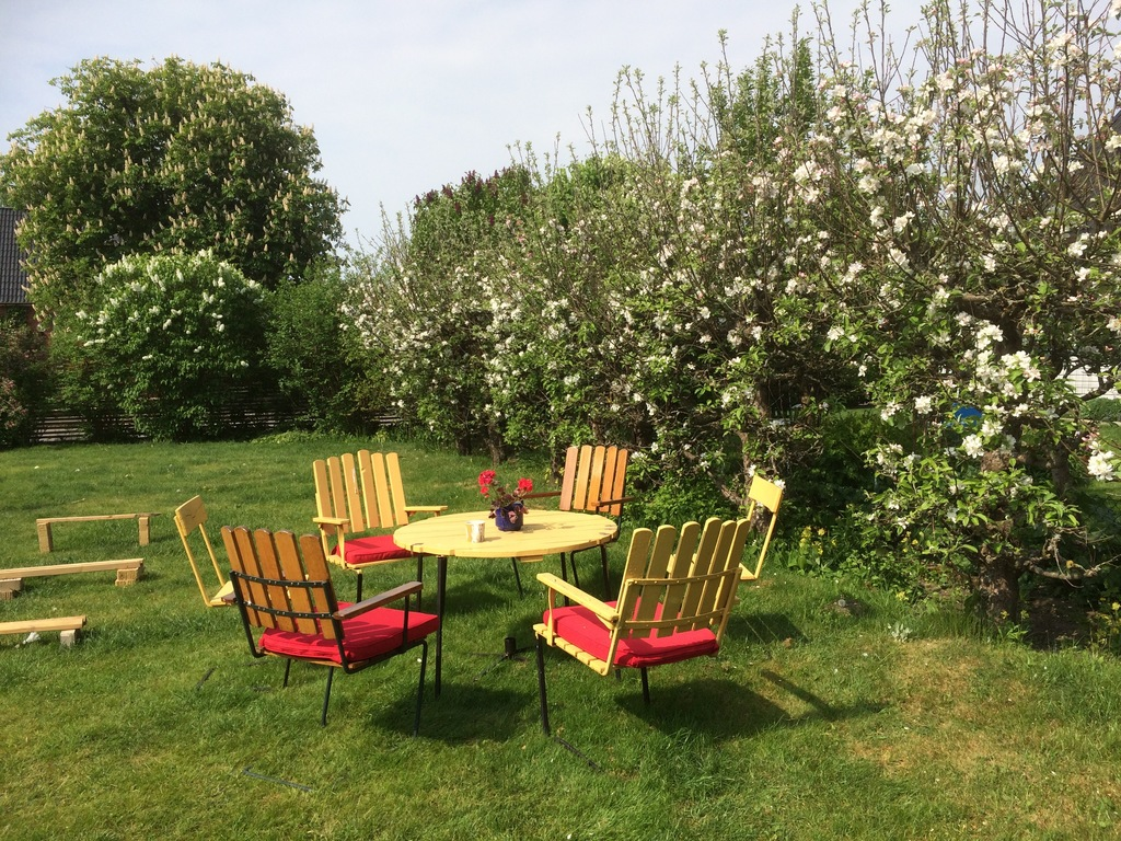 Springtime in the garden. Apples trees are in full bloom.