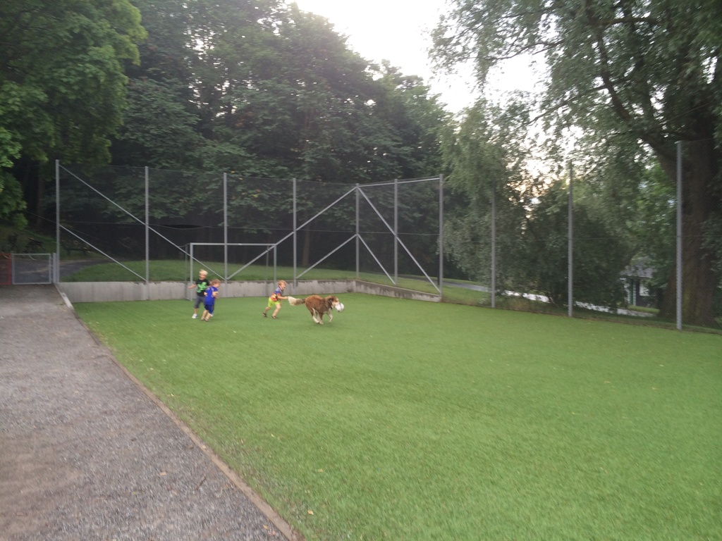 There are several follball fields and playgrounds within a few minutes of walking from the apartment