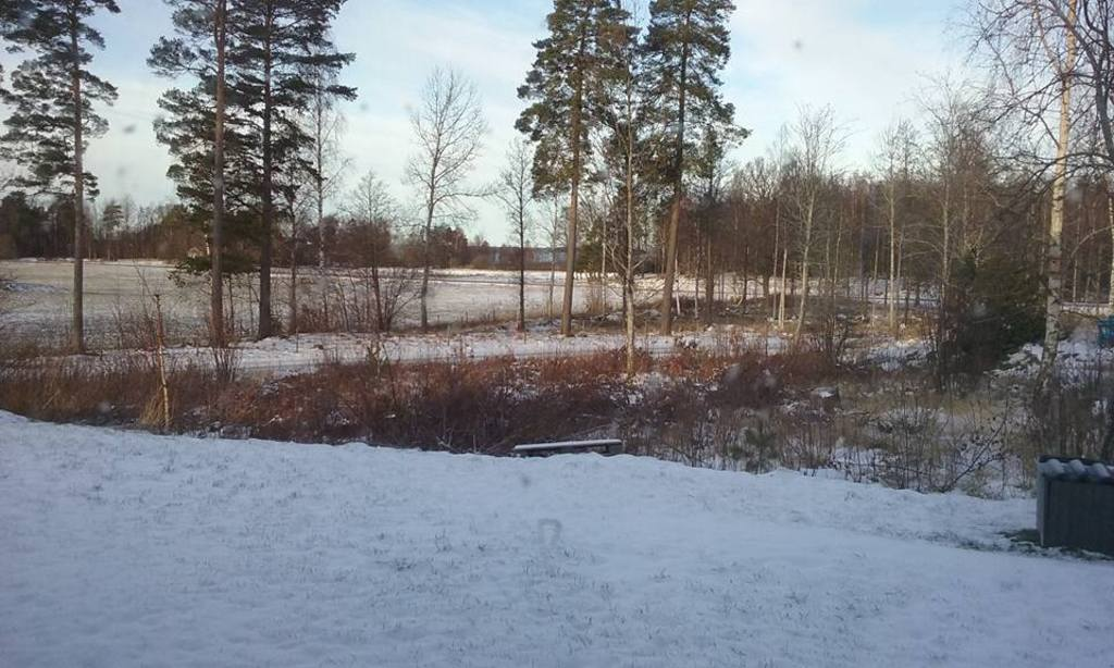 Photo taken from the small porch, towards the lake
