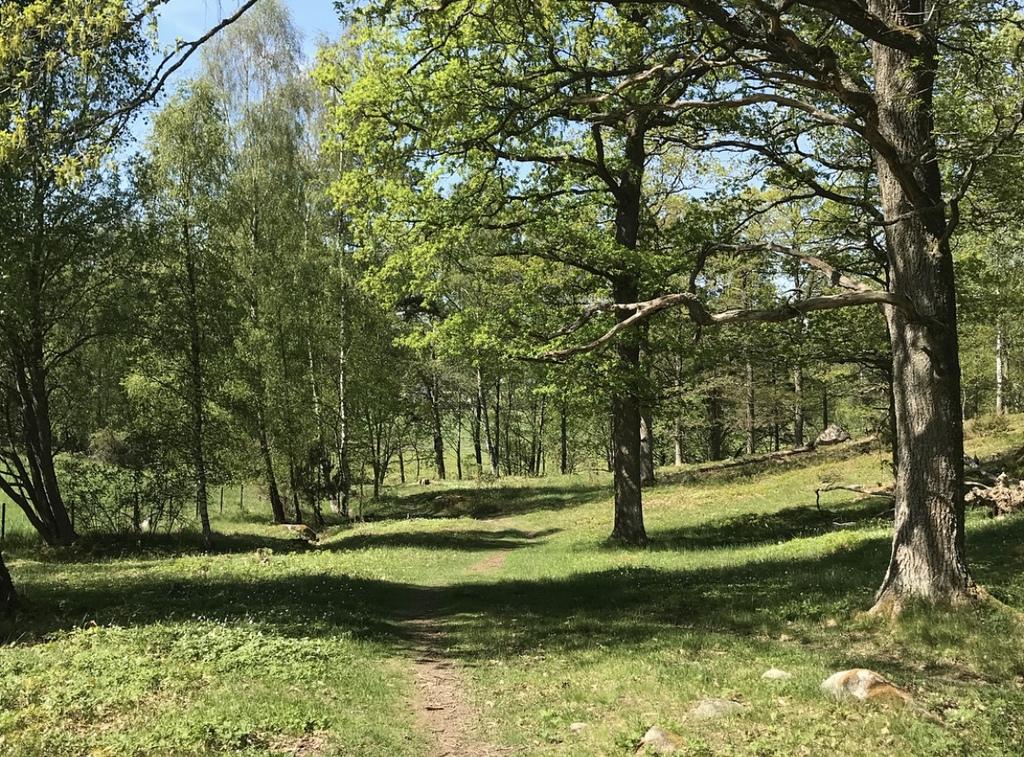Trails just around the corner