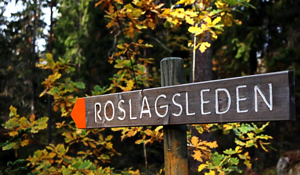 Roslagsleden  - forest walking and moutainbike route 190 km in total starts closeby https://www.svenskaturistforeningen.se/leder