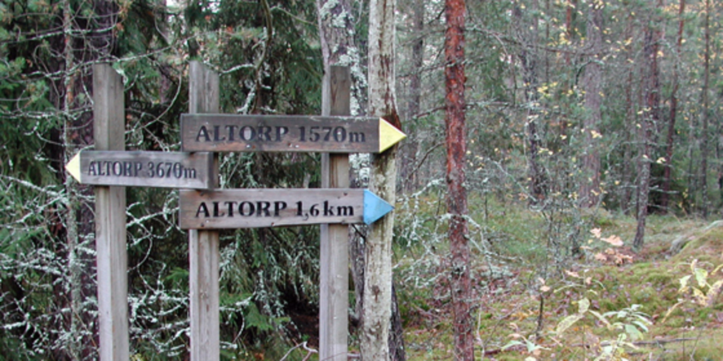Forest running tracks - Altorp