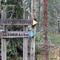Forest running tracks - Altorp
