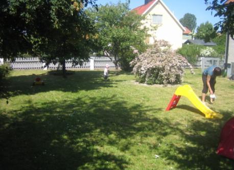 The garden in July.