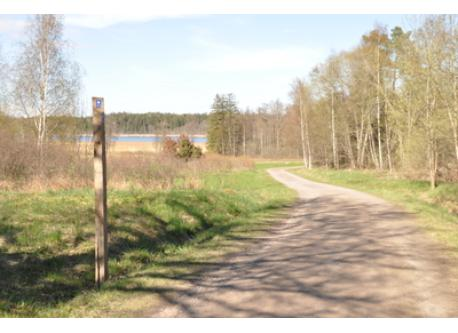 Nice walking and cycling paths