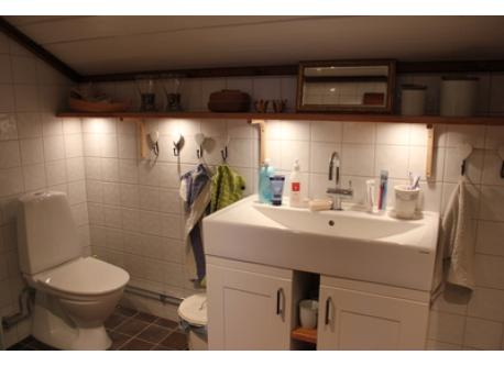 Bathroom with a shower upstairs