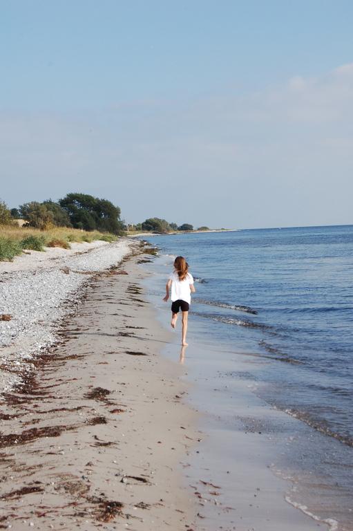 A nice run on the beach