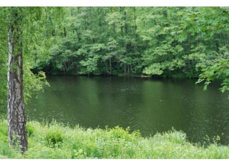 the river Viskan, practicly 30 meter from us
