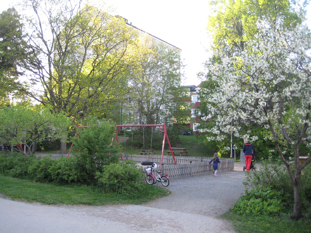 The playground next to our house