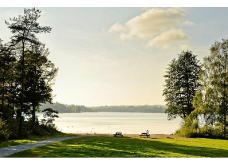 Closest lake, 500 meters