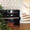 Piano downstairs