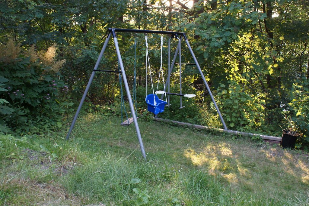Swings in the garden