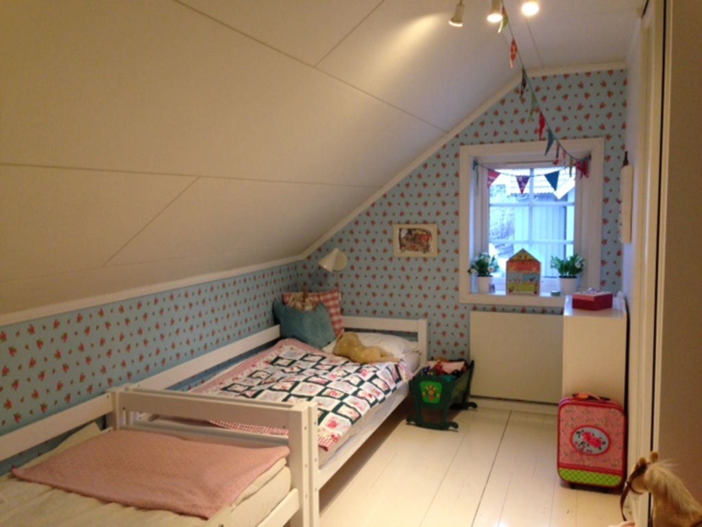 Children's room 1 (place for 4 children - the pull-out beds have we newly bought)