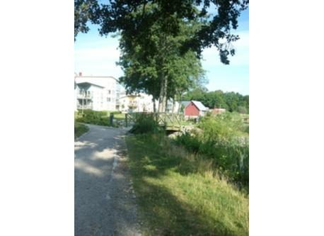 Lake-side path