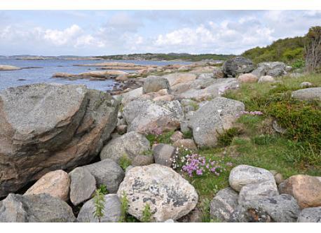Stora Amundön, the coastline 3 km from our house