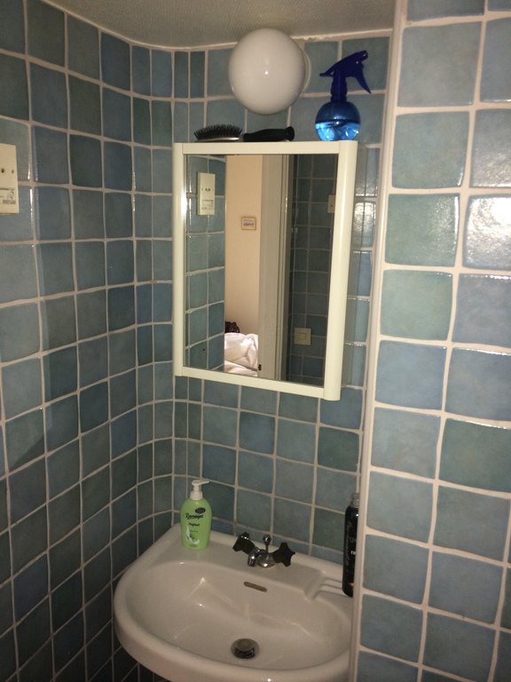 Basin, together with shower-bath