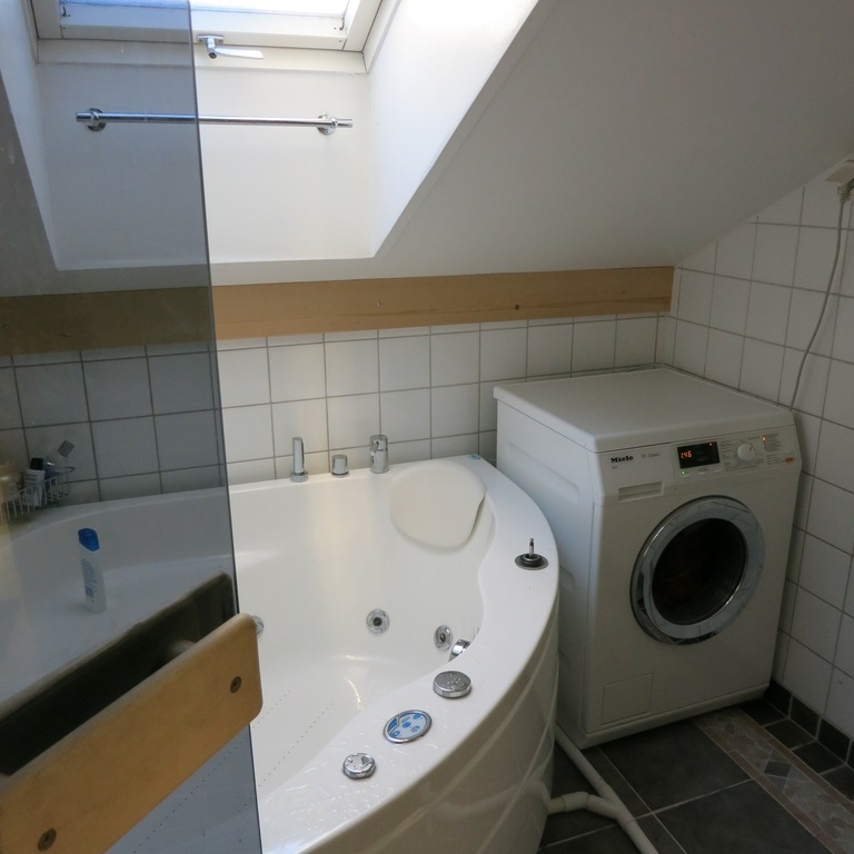 Bathroom/ laundry