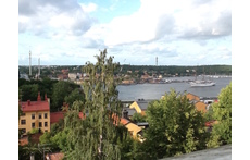View summertime