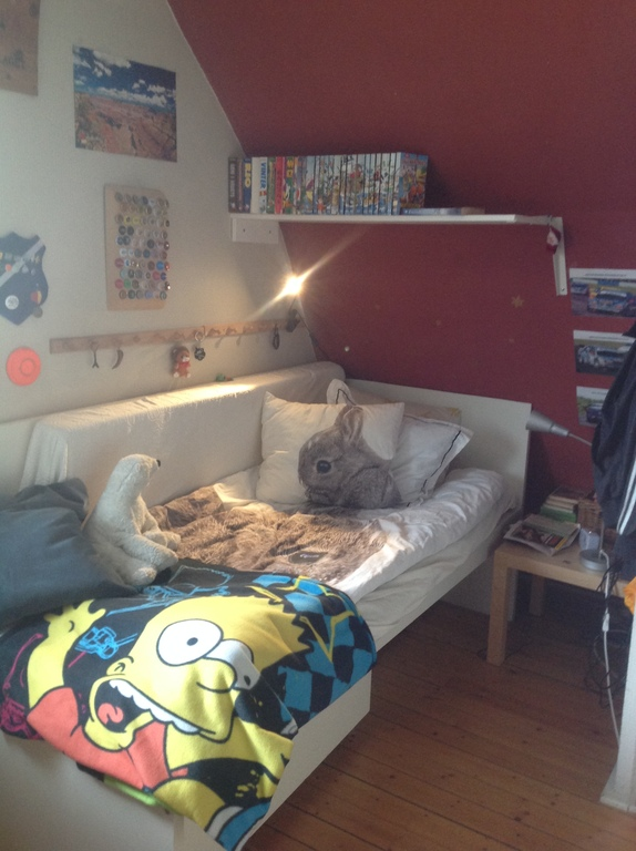 Pontus's room