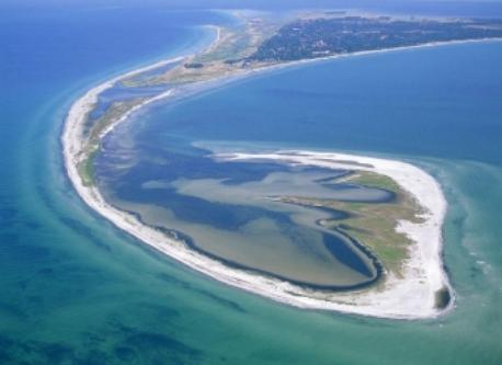 Måkläppen peninsula, just outside Falsterbo, home of many different seal-calves and bird species