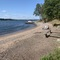 Private 100 meter sandy beach on the Baltic we share with our neighbours