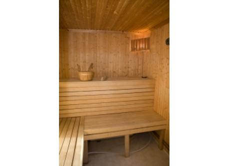 Swedish sauna with shower in an adjacent wooden cabin
