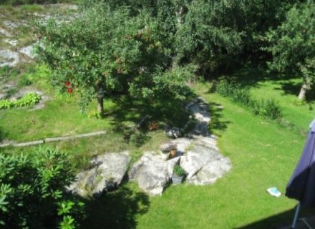 Back garden (seen from second floor)