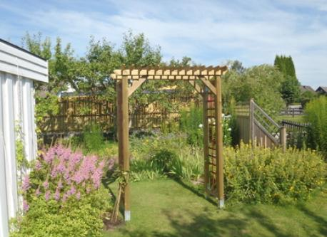 A part of our garden.