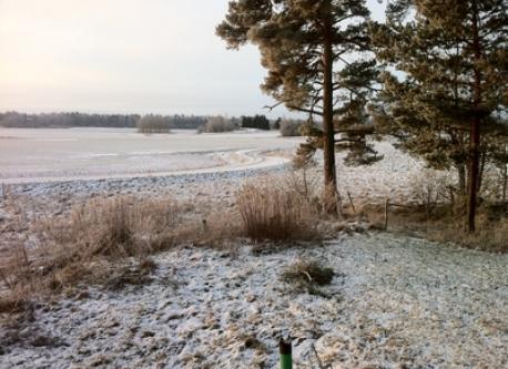 Mild winter