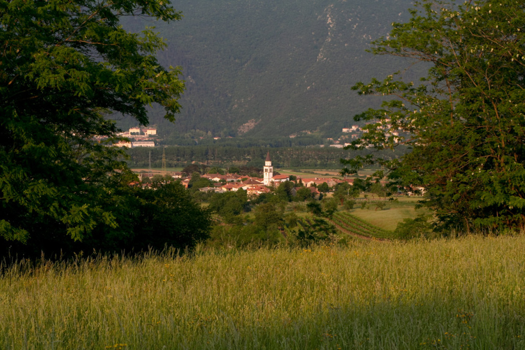 A view on the village from the vineyards.
