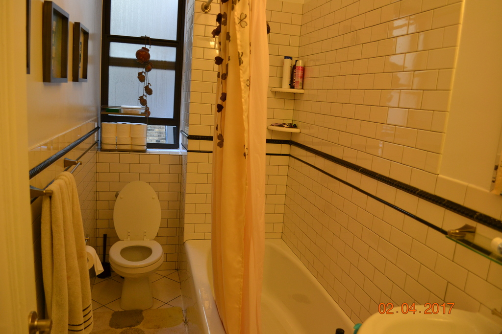 Larger hall bathroom, with shower and tub
