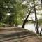 Jamaica Pond Two Blocks Away