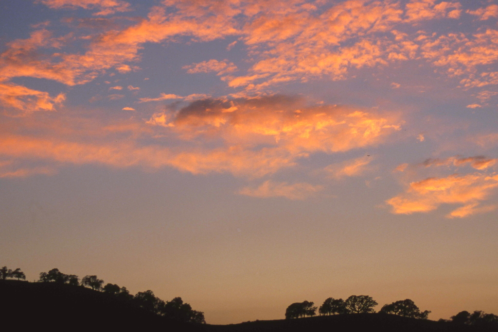 Walnut Creek sunset