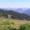 View from Hurricane Ridge, Olympic National Park