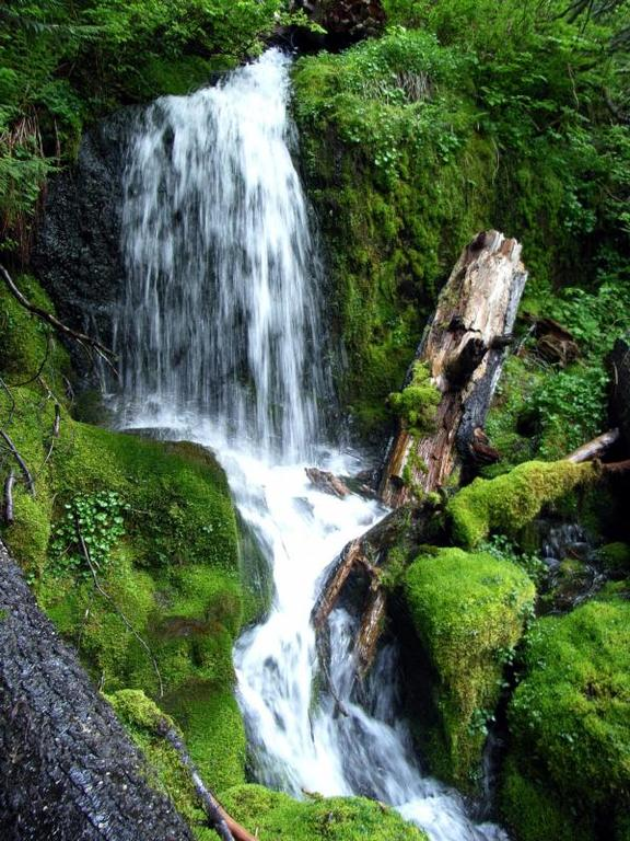 Waterfall in Mt. Rainier National Park