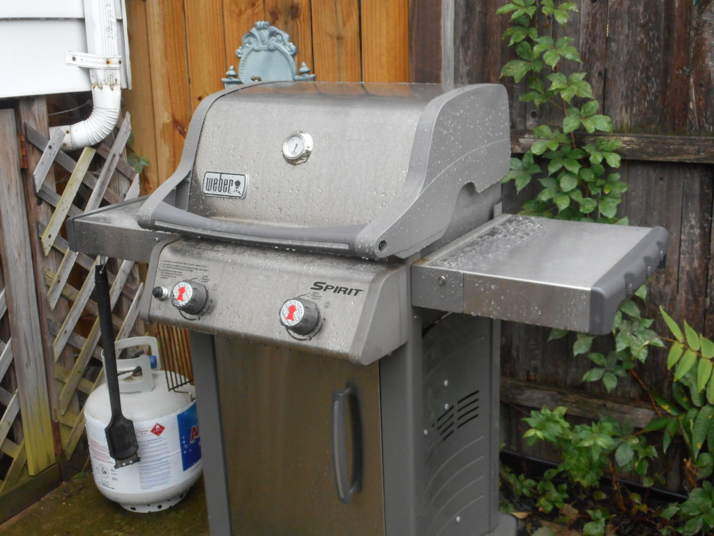 Backyard gas grill.