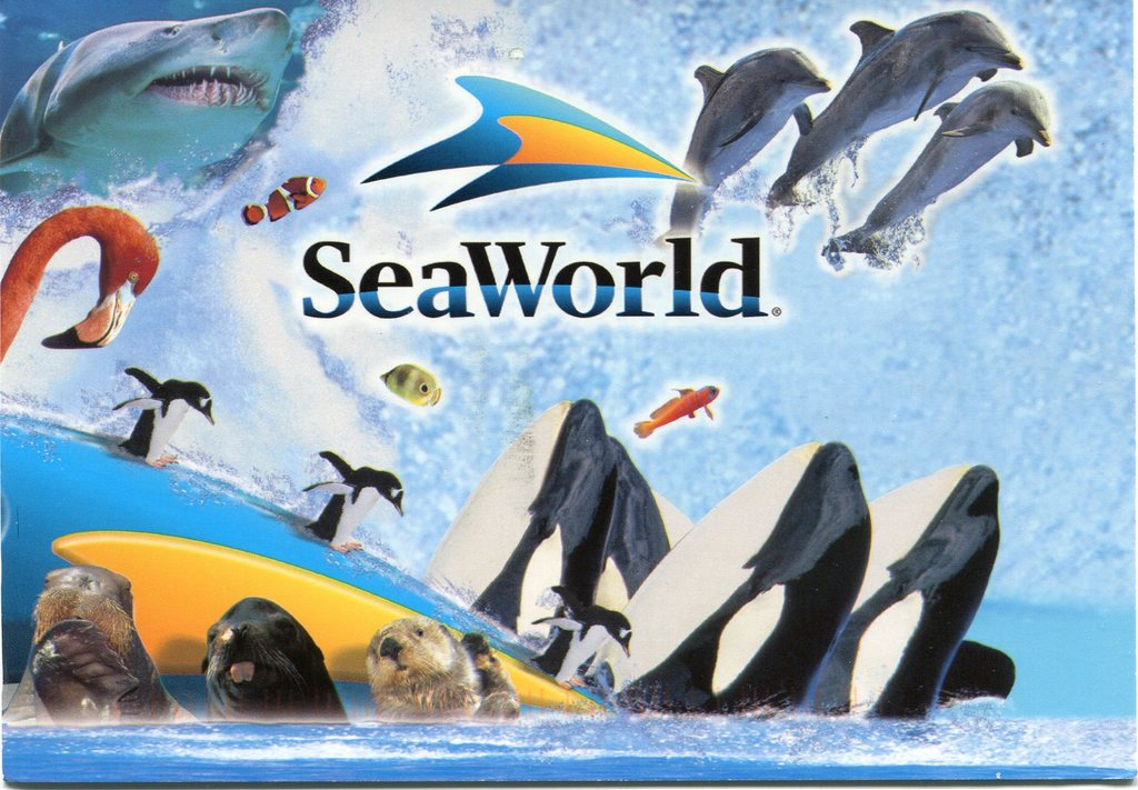 Sea World - 30 minute drive