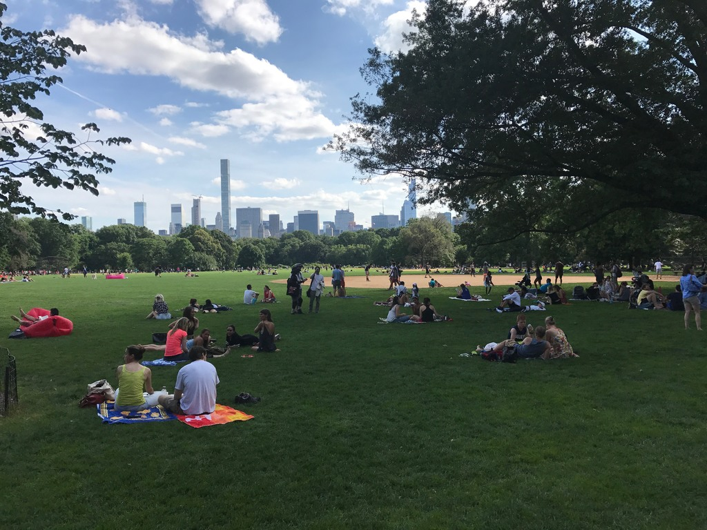 The Great Lawn at Central Park