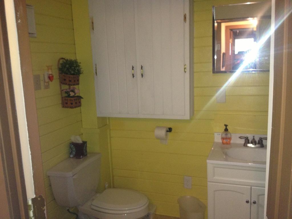 main level bath with tub/shower