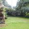 Our backyard garden